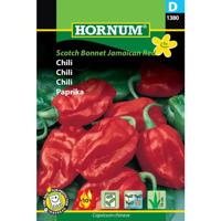 Chili, Scotch Bonnet Jamaican Red (D)