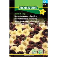 Blomsterkarse, blanding, Night & Day (D)